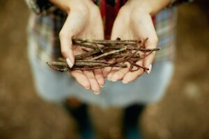 A person's hands holding a small bunch of twigs, kindling for the camp fire.