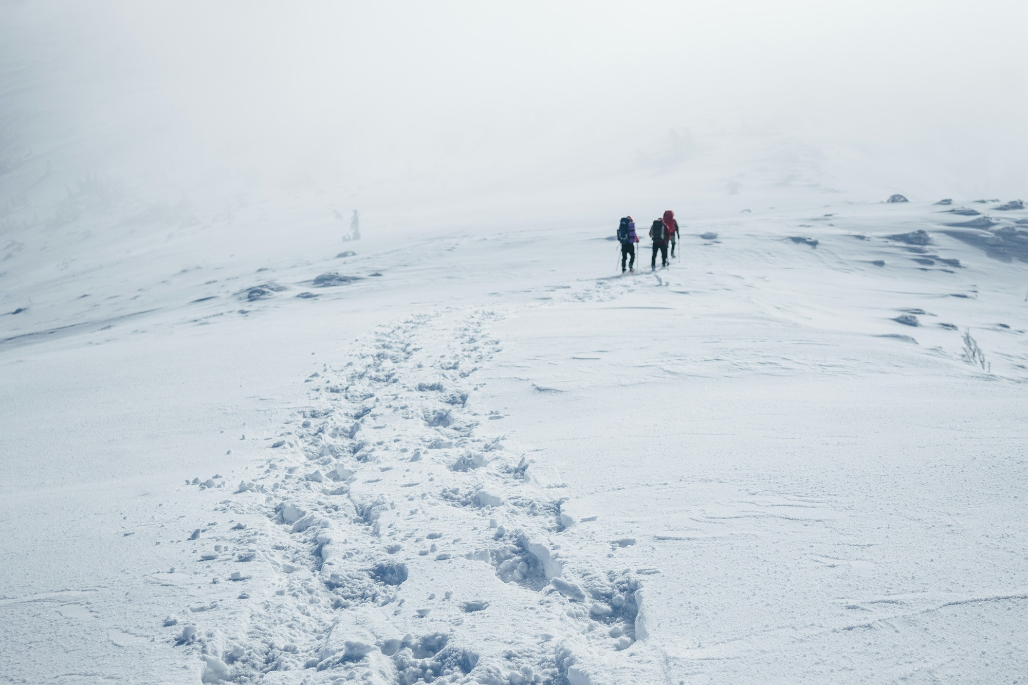 Climbers struggling winter blizzard in Gorgany mountains